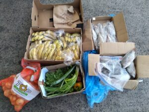 YWICCN Foodbank
